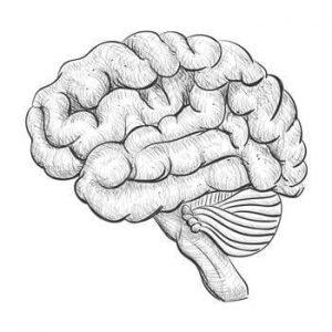 רשלנות רפואית נוירולוגיה